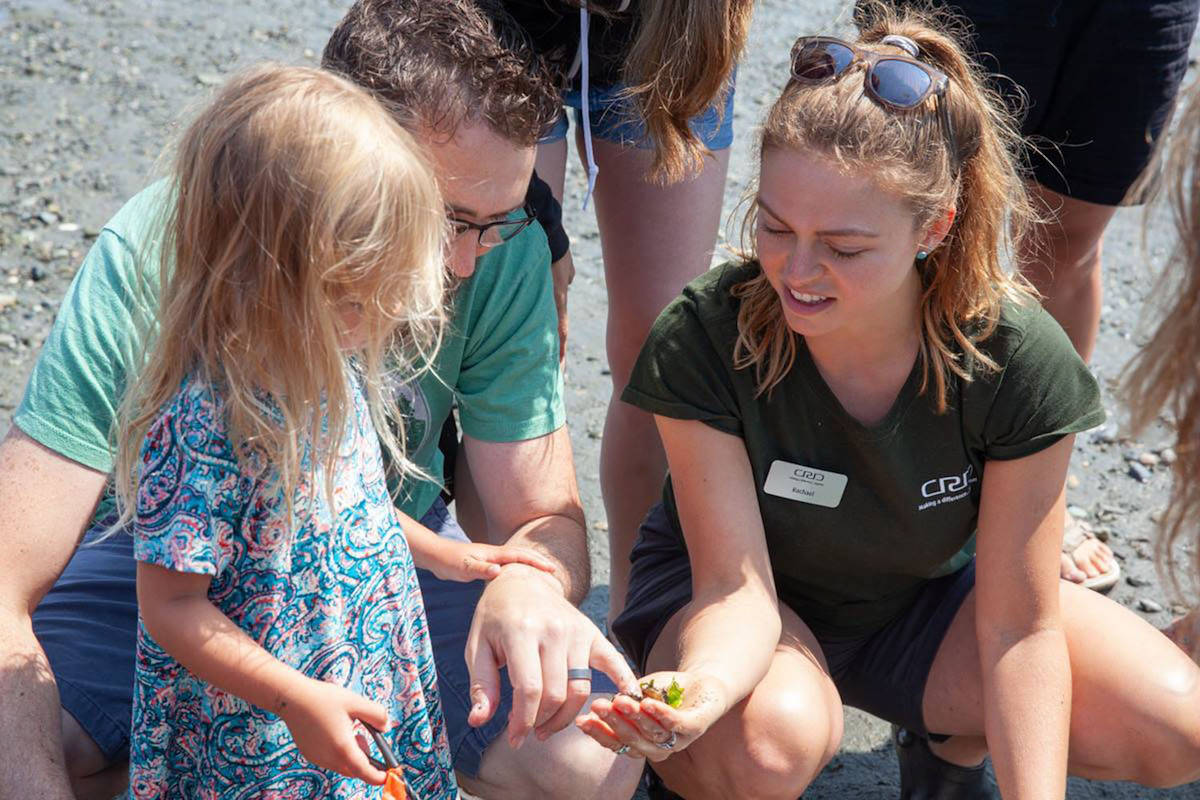 Free kids' nature walks offer crabs, marine beasties and Canada's largest marine snail
