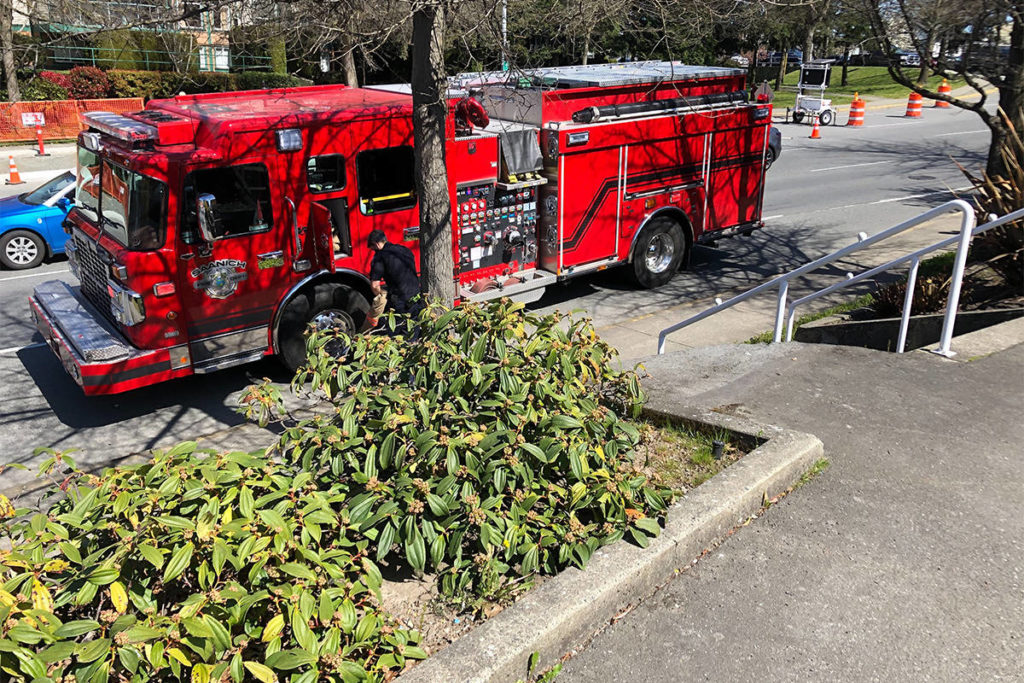 UPDATED: Saanich fire crews close road over smoking underground electrical equipment - Oak Bay News
