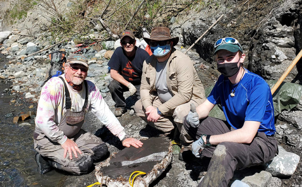 Courtenay fossil hunter finds ancient turtle on local river - Oak Bay News